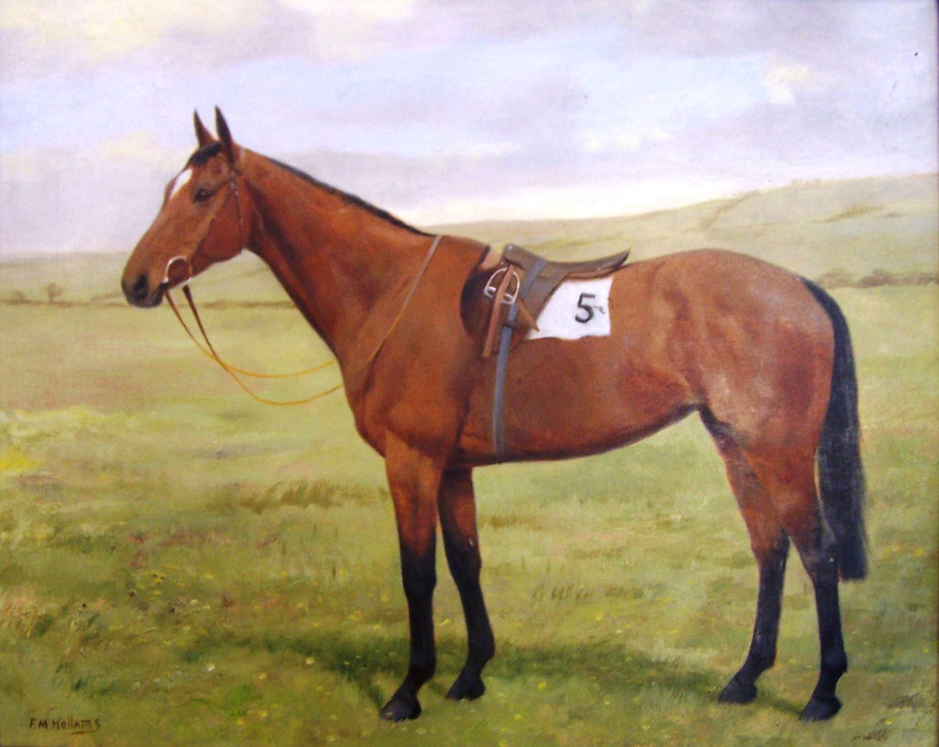 "FLORENCE MABEL HOLLAMS (1877-1967); study of a racehorse in a field, the saddlecloth marked 5, oil on board, signed. 15 1/2"" (39cms) x 19 1/2"" (50cms). ARR"